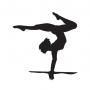 Gymnastic GY-2